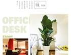 昌平专业绿植租摆 办公室绿植 花卉租赁 绿植养护