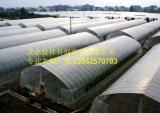 北京温室大棚厂家价格 质优价廉 施工迅速