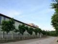 新兴工业园兴发路厂房 厂房 2500平米