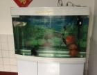 鱼缸森森牌的1.2米