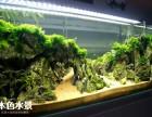 本色水景 鱼缸造景培训学习,水族缸生态缸草缸造景培训开店加盟
