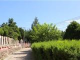 北京市昌平区,炎黄陵园环境优势与交通是否便利