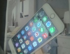 苹果6p99新