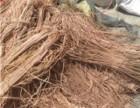 赤峰高价回收各种废电线电缆