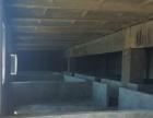 西山 西山萨尔达坂乡 厂房 800平米