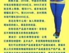 祖海琴电子商务培训网络营销培训网店经营培训