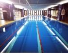 力美健游泳健身 专业游泳培训