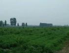杨柳北两公里 72000平米