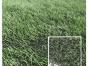 人造草坪发展历史球场是用假草好还是真草好