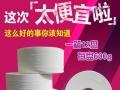潍坊清洁纸业