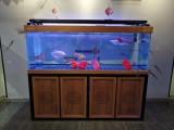 上海魚缸定制松江賣魚缸的地方定制魚缸
