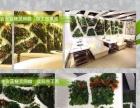 垂直绿化哪家强 植物墙徐东找嘉朗