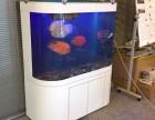 深圳清湖地铁站有清洗鱼缸的公司吗