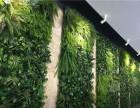 北京绿植墙订做北京仿真绿植墙批发