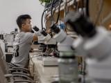 本溪致技手机电脑家电维修培训中心 速成班