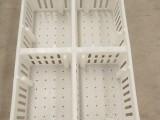 苗鸡苗鸭周转箱 塑料雏鸡周转筐 小鸡运输筐 小鸡筐