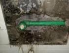 苏州专业水电工水电维修 电路 水管 水龙头漏水维修安装
