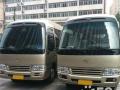 考斯特租车 通勤租车旅游包车55座金龙GL8商务车