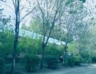 经济开发区洮白立交桥 厂房 1000平米,带地下室