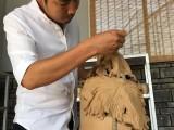 传承谷庄楚窑文化,10余年李航老师的匠人之心从未停过