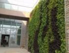罗湖仿真植物墙,绿植墙,花墙,立体绿化,免费设计施工