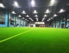 红人室内球场,可约足球 棒球 橄榄球