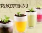 时尚冰饮培训时尚饮品教学盆栽奶茶饮料做法