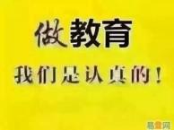 青浦山木培训小语种英语韩语日语阳光组合火热报名中
