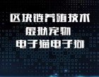 安徽神游科技专业虚拟货币系统开发