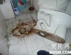 南京打捞金银手饰公司专业打捞戒指项链