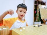 南宁专注力注意力训练培训学校-南宁聂卫平围棋学校