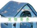 北京长年猫狗兔等宠物寄养15元起上门接送空运铁路运