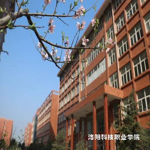 洛阳瀍河区国际金融学院包就业