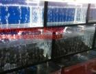 北京專業制作維修魚缸海鮮池
