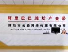 潍坊拼多多网店托管代运营的公司