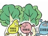 正确保存蔬菜更新鲜有营养 有机农场