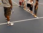 苹果园网球培训