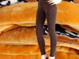 厂家直销 雪绒狐女士高腰薄款保暖裤 女式九分超柔打底裤棉裤批发