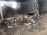 廢卷材回收,廢油氈回收,