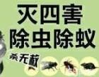 灭鼠杀臭虫深圳专业服务 深圳杀虫公司服务价格