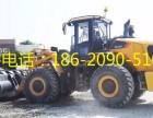 湖南柳工装载机/铲车价格 -柳工系列销售咨询电话
