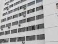 东城两居安外大街10号楼 和平里三正规客厅 满五公房
