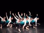 广州专业舞蹈培训班,芭蕾古典拉丁爵士