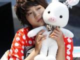 猪兔子 韩国美男兔子猪毛绒玩具情人节礼物 超大号毛绒玩具