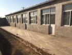205国道(杨贵庄段) 十间彩钢房加厂房600平米