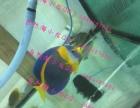 唐山自然海海洋馆专业海缸