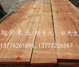 优质红桦木 红桦板材 红桦家具板材价格 红桦厂家批发出售