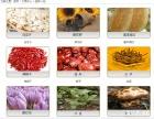 鹤壁天津汇港农产品交易市场招商加盟,互联网+金融创业