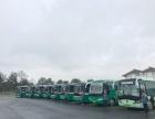 全新旅游大巴车,中巴车,商务车