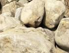 园林装饰鹅卵石 杂色鹅卵石 建筑装饰纯色鹅卵石
